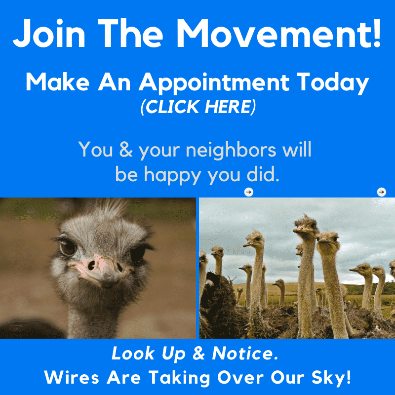 click to make an apppointment to get Overhead wires & Satellite dishes from home